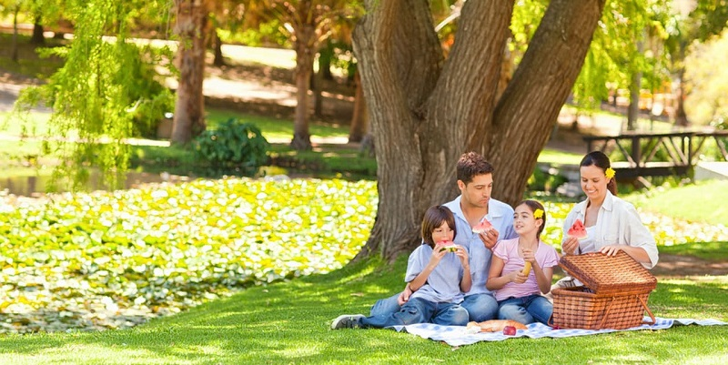 How To Make Your Outdoor Picnic Interesting With Your Friends